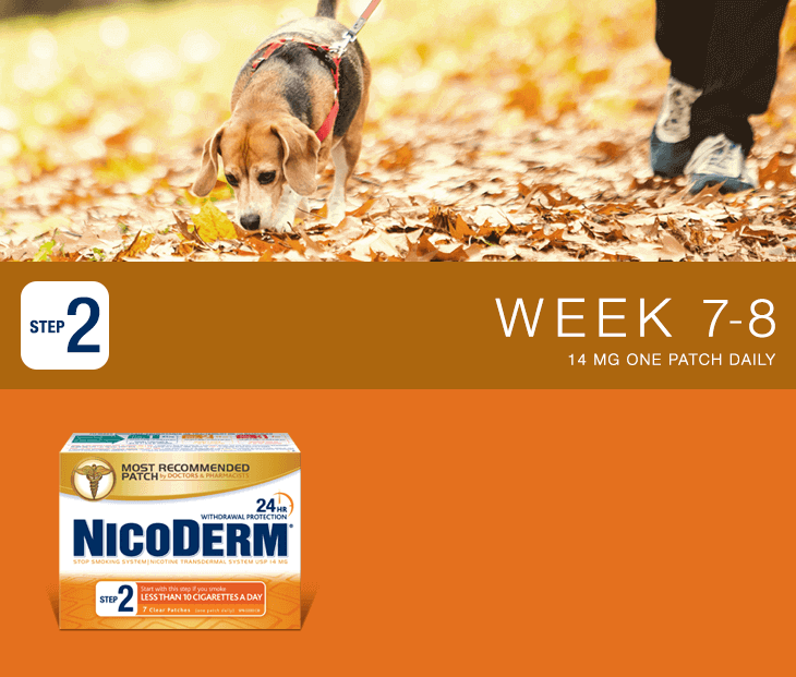 Nicoderm Step 2 - 14 MG Nicotine Patch