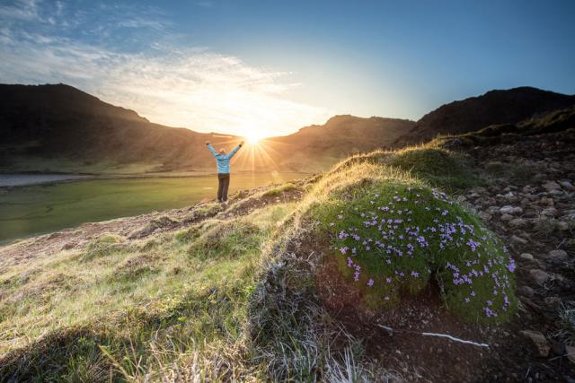 Sunrise over a grass field, person with outstretched arms